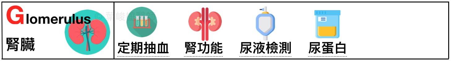diabetic-abcdefgh-holistic-care glomerulus 全人照護